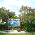 Lake Tarpon Villas